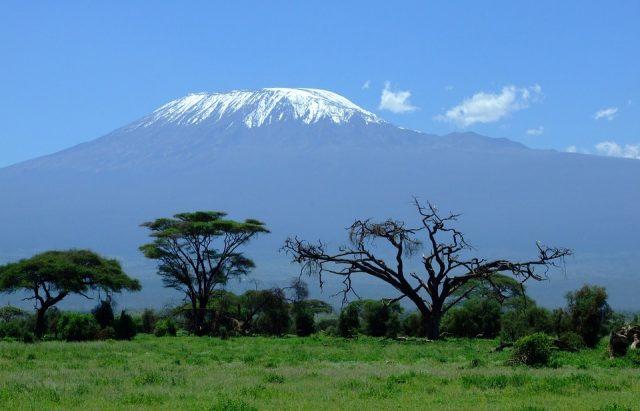 A la découverte du Kenya
